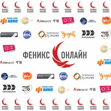 Компания «Феникс-онлайн» поделилась результатами первого полугодия работы